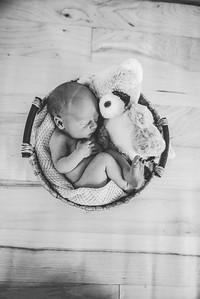 Calen Newborn-7bw