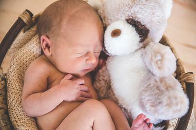Calen Newborn-6