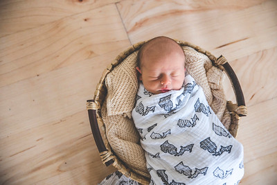 Calen Newborn-2