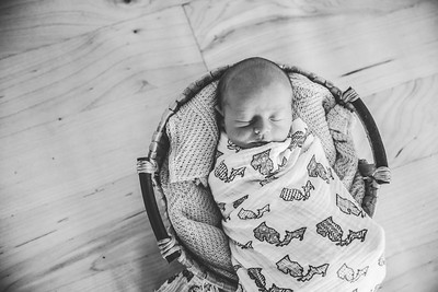 Calen Newborn-2bw