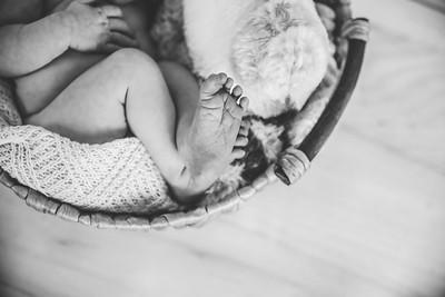 Calen Newborn-5bw