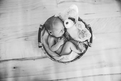 Calen Newborn-4bw