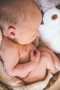 Calen Newborn-8