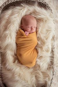 Waylon Newborn-20