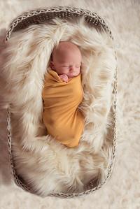 Waylon Newborn-19