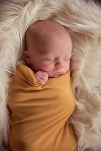 Waylon Newborn-21
