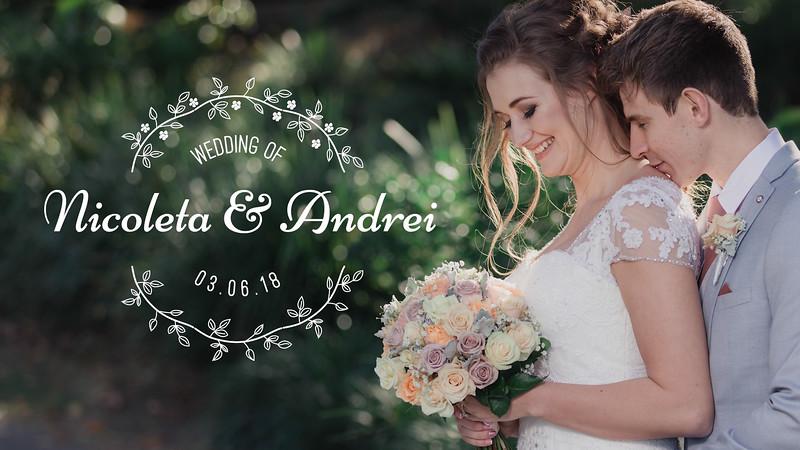 Wedding_Highlights_Version_1080P_Nicoleta_and_Andrei