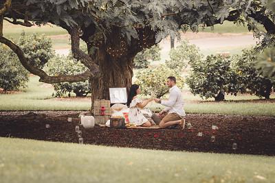 ND_She_Said_Yes_Wedding_Photography_Brisbane_0036