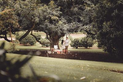 ND_She_Said_Yes_Wedding_Photography_Brisbane_0008