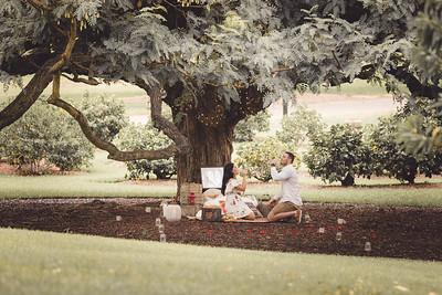 ND_She_Said_Yes_Wedding_Photography_Brisbane_0038