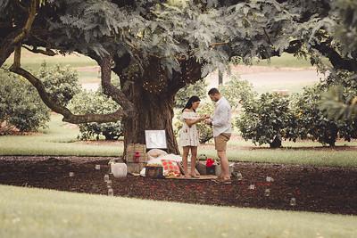 ND_She_Said_Yes_Wedding_Photography_Brisbane_0021