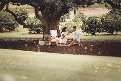 ND_She_Said_Yes_Wedding_Photography_Brisbane_0030