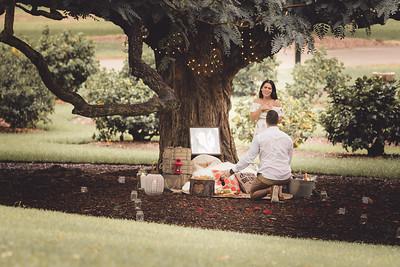 ND_She_Said_Yes_Wedding_Photography_Brisbane_0017