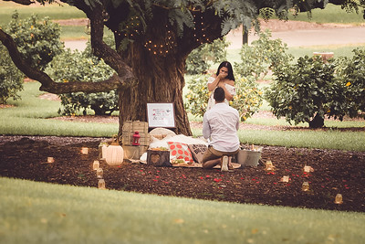 ND_She_Said_Yes_Wedding_Photography_Brisbane_0018