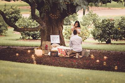 ND_She_Said_Yes_Wedding_Photography_Brisbane_0018