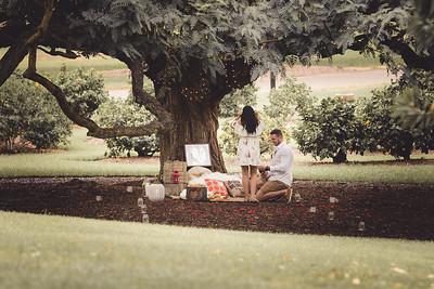 ND_She_Said_Yes_Wedding_Photography_Brisbane_0029