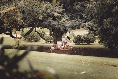 ND_She_Said_Yes_Wedding_Photography_Brisbane_0007