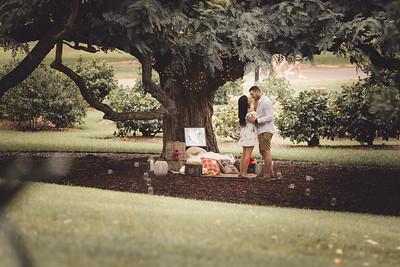 ND_She_Said_Yes_Wedding_Photography_Brisbane_0005