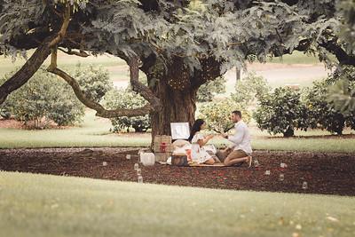 ND_She_Said_Yes_Wedding_Photography_Brisbane_0037