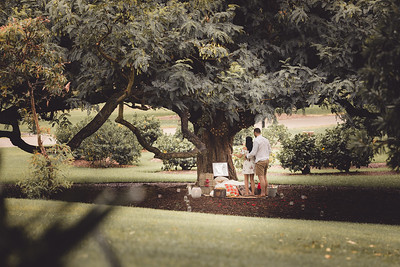 ND_She_Said_Yes_Wedding_Photography_Brisbane_0009