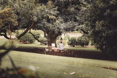 ND_She_Said_Yes_Wedding_Photography_Brisbane_0014