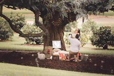 ND_She_Said_Yes_Wedding_Photography_Brisbane_0016