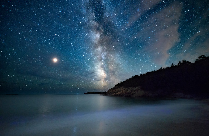 Bioluminescence and Acadia Night Sky