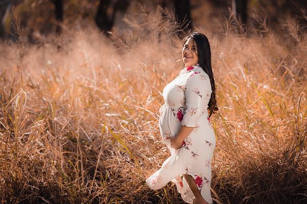 Maternity-photo-session_She_Said_Yes_Wedding_Photography_Brisbane_0011