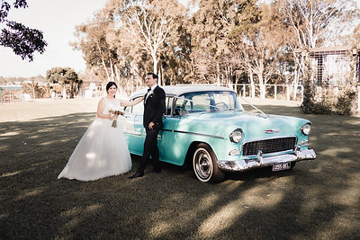 552_Bride-and-Grrom_She_Said_Yes_Wedding_Photography_Brisbane