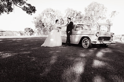 554_Bride-and-Grrom_She_Said_Yes_Wedding_Photography_Brisbane