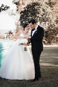 549_Bride-and-Grrom_She_Said_Yes_Wedding_Photography_Brisbane