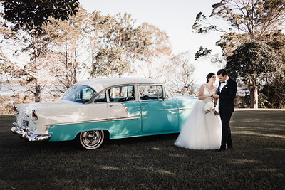 546_Bride-and-Grrom_She_Said_Yes_Wedding_Photography_Brisbane