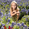 Sunday bluebonnets_0003