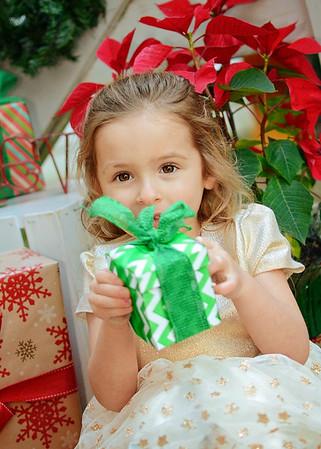 Victoria {holiday mini}