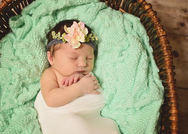 Vivian {newborn}