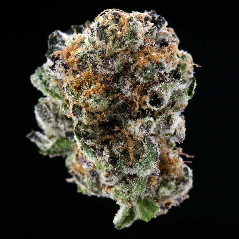 BR4A2276 TJsProvisions - Platinum Girl Scout Cookies- THC 18 5% - CBD  10%copy