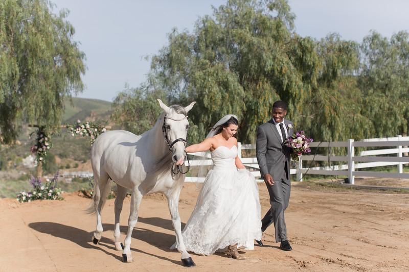 EquestrianStyledShoot-27