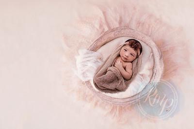 Aria Newborn Shoot