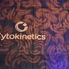 Cytokinetics Christmas Party - 14th Jan 2017.