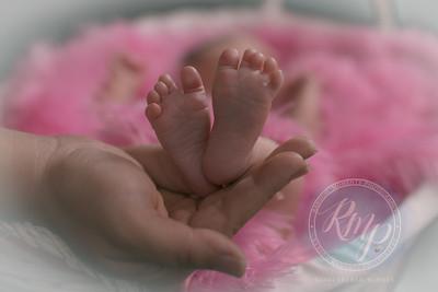 Larouche Newborn Shoot