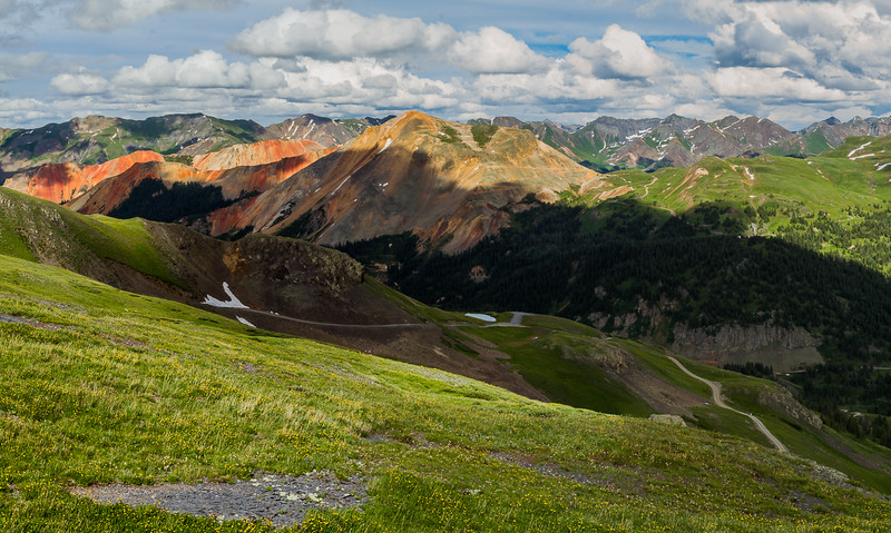 Notheastern San Juans and Red Mountain #3 from Black Bear Pass Road, San Juan Mountains (Panoramic image) - Colorado Wildflowers - Nancy Varga - July 2015