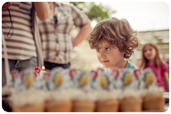 Joliet Naperville Family Children Photographer-13