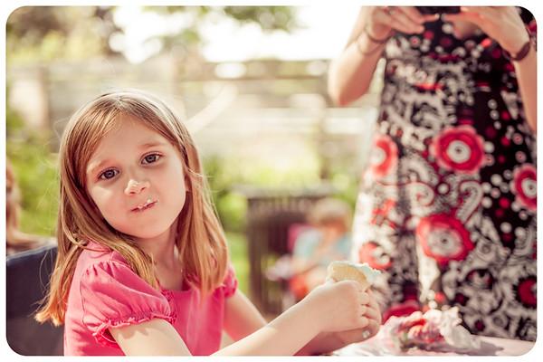 Joliet Naperville Family Children Photographer-16