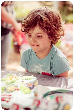 Joliet Naperville Family Children Photographer-15