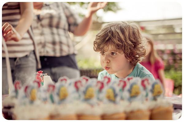 Joliet Naperville Family Children Photographer-14