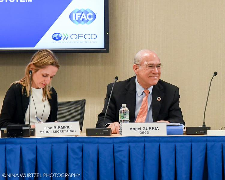 IFAC_OECD-19