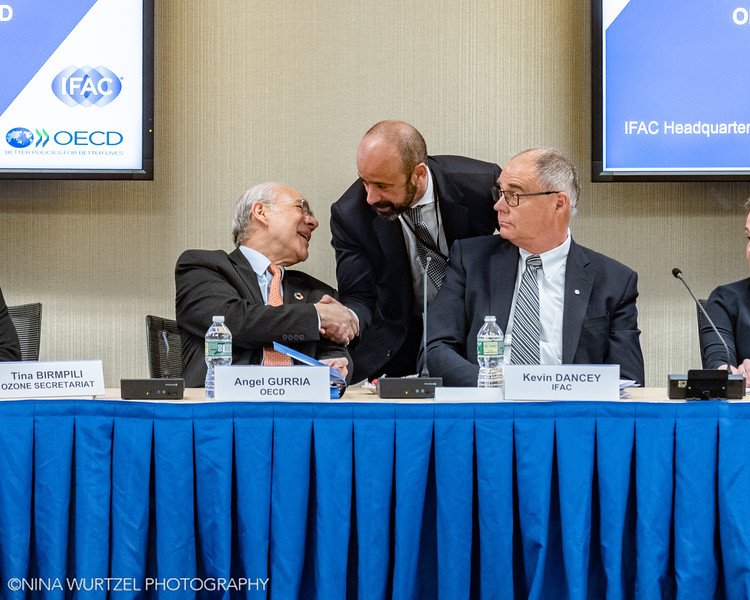 IFAC_OECD-29-Edit