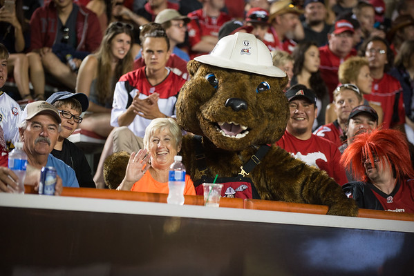 20160729_HOWIE_THE_HUNEY_BADGER_STA0389EB