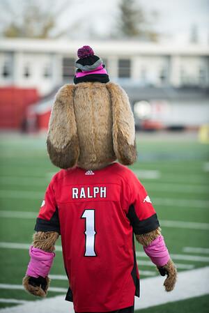 20161015_RALPH_THE_DOG_STA0184EB.jpg