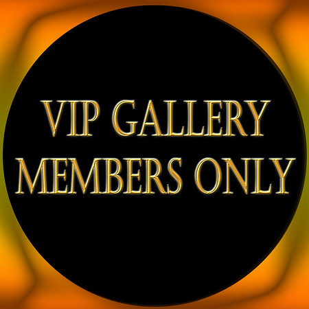 VIP MEMBERS ONLY PRIVATE VIEWING GALLERY